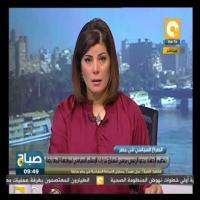 نبيل نعيم: إسرائيل تريد القضاء على الجيش